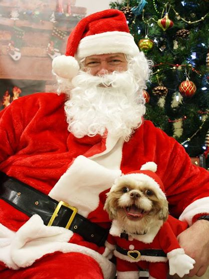 Santa and MuttShack dog