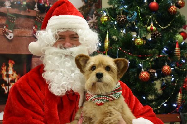 Santa-adopted-family-3