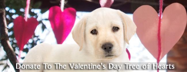 valentineday-promo