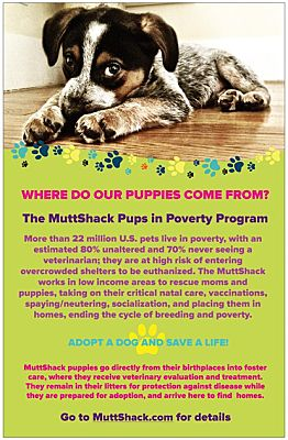 Muttshack Pups In Poverty Program